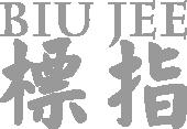 Wong Shun Leung Ving Tsun Seminar Lehrgang Privatunterricht sindelfingen boeblingen