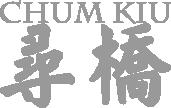 Wong Shun Leung Ving Tsun Seminar Lehrgang Privatunterricht Stuttgart