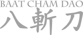 Wong Shun Leung Ving Tsun Seminar Lehrgang Privatunterricht trainer